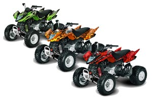 Arctic Cat DVX300 ATV Custom Graphic Kit - All Years